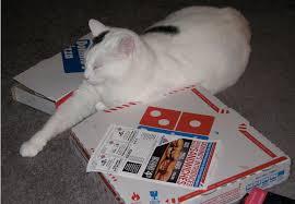 jobs at domino s pizza 50 off online order domino s pizza consumerist
