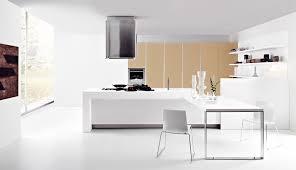 black and white kitchen interior design deploying smart plan