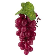 Grape Cluster String Lights by Amazon Com Plastic Artificial Cluster Grapes Fruit Decorative Red