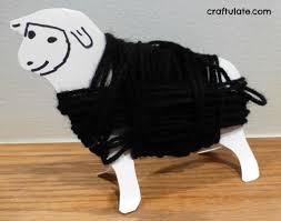 wrap sheep