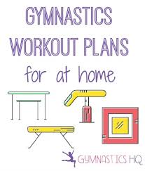 workout plans for beginners at home gymnastics at home workout plans