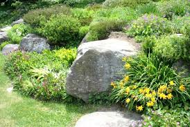 Simple Rock Garden Rock Garden Pictures Ideas Simple Rock Gardens Simple And Easy