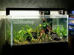 Diy Aquascape Jual Lampu Led Diy Aquascape Aquarium 80cm 80 Cm Dzklikoshop