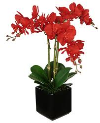 Orchid Flower Arrangements Artificial Red Triple Stem Orchid In Black Cube Vase Traditional
