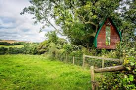 british airbnb users want to stay in this treehouse in cornwall