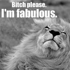 I Am Fabulous Meme - 29 best bitches please i m fabulous images on pinterest i m
