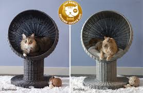 modern cat beds kitty ball bed by the refined feline