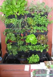 how to build a wall garden aquaponics system the aquaponics system