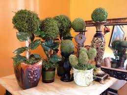 decor tuscan home decor with various models of decorative plants