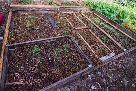 Backyard Farms Eco City Farms U2013 Farm Talk A View Of Reinal U201croy U201d Caspari U0027s