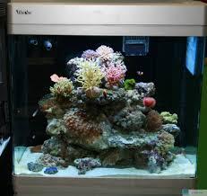 Wohnzimmer Einrichten Grundlagen Das Nanoriff Einrichtung Und Grundlagen Www Korallenriff De