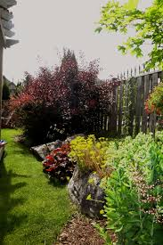 Fence Line Landscaping by Planting Adds Extra Screening From Neighbours Along Fence Line