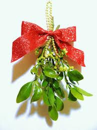 christmas mistletoe best 25 mistletoe plant ideas on mistletoe craft