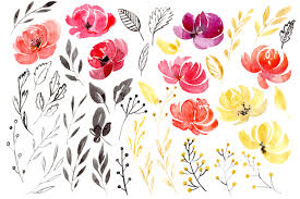 burgundy flowers watercolor burgundy flowers png set by design bundles