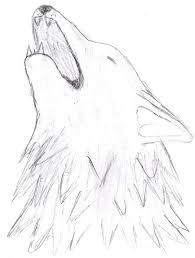 howling wolf head sketch by thewolflover1000 on deviantart