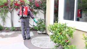 what to expect house pest control youtube
