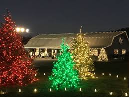 putting up christmas lights business decorate your business for christmas christmas lights clc