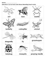 coloring for kids printable pictures of insects fresh at model