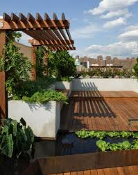garden design roof garden design with fish pond and pool water