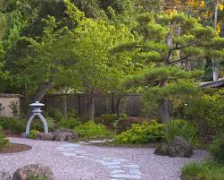 Backyard Tree Ideas Pine Tree Lanedscaping Ideas U0026 Photos Houzz