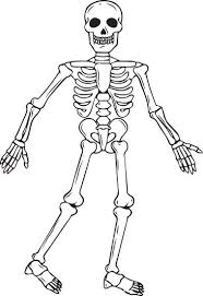 Human Skeleton Coloring Page skeleton coloring pages getcoloringpages