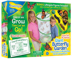 amazon com insect lore giant butterfly kit deluxe 18