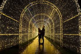 World S Largest Christmas Light Maze Opening In Vancouver Next Week