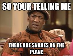Snakes On A Plane Meme - all that pussy on that beach and he eats another guy s face