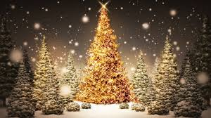 christmas tree lighting maugerville community center