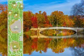Map Central Park Map Find The Colorful Fall Foliage Of Central Park U0027s 20 000 Trees