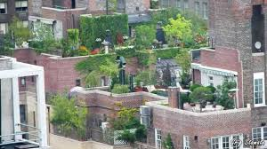 Rooftop Garden Design Garden Design Garden Design With Rooftop Gardens On Pinterest