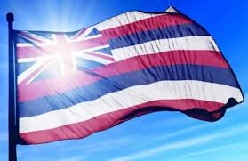 Hawaiian Flag James Logue U2013 James Logue For State House District 29