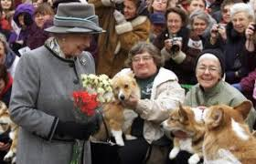 The Queens Corgis The Queen U0027s Corgis And Other Breeds At Risk Of Extinction
