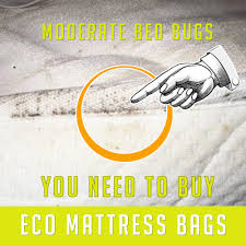 How To Make A Round Bed Mattress by Bed Bug Mattress Bags I Stop Bed Bug Infestations Today