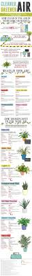 best 25 indoor air quality ideas on pinterest house plants air