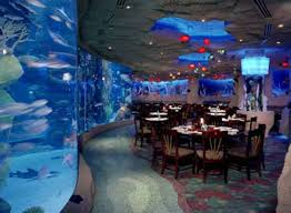 wedding reception venues denver best 25 denver aquarium ideas on downtown denver