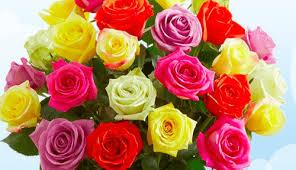 flowers canada 1 800 flowers canada promo code 15 flower