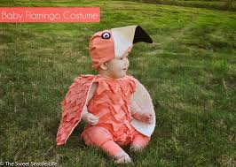 eagle halloween costume chris and sonja the sweet seattle life halloween baby flamingo