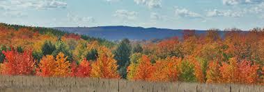 Autumn Colors Traverse City Fall Color Tours Fall Leaf Peeping