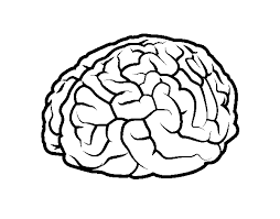 Brain Coloring Pages Www Uocodac Com Brain Coloring Page
