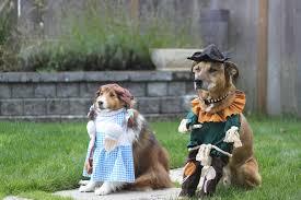 Winnie Pooh Dog Halloween Costume 20 Pawsome Halloween Costume Ideas Dog Pawsable