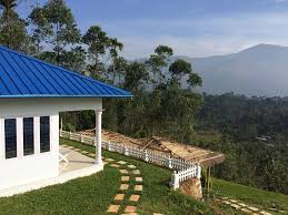 Munnar Cottages With Kitchen - resort lilies munnar munnar india booking com