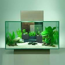 found it at wayfair 12 gallon fluval edge aquarium kit
