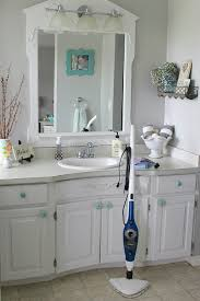 How To Clean A Bathroom Professionally 10 Things To Clean After The Flu Clean And Scentsible