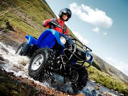 2014 yamaha grizzly 125 images reverse search