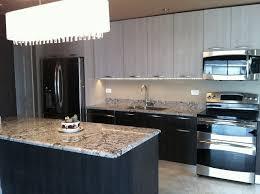Modern Kitchen Cabinets Chicago Chicago Il Kitchen By Arrital Yoshi Kitchen Cabinets Chicago Il