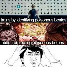Funny Hunger Games Meme - best 25 hunger games memes hunger games hunger games humor and