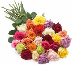 multicolored roses filgiftshop multicolored roses filgiftshop