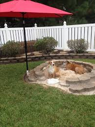 backyard ideas for dogs backyard for dogs outdoor goods
