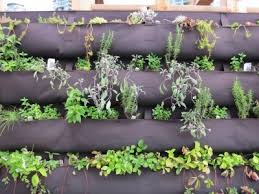 how to build an herb garden information about diy herb walls tips on making vertical herb